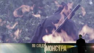 Выпуск от 12 сентября 2020 года.«Родная кровь».НТВ.Ru: новости, видео, программы телеканала НТВ
