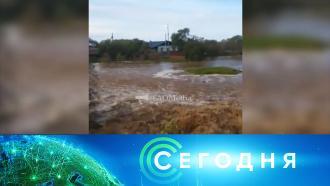 15 сентября 2020 года. 08:00.15 сентября 2020 года. 08:00.НТВ.Ru: новости, видео, программы телеканала НТВ