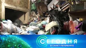 21 сентября 2020 года. 16:15.21 сентября 2020 года. 16:15.НТВ.Ru: новости, видео, программы телеканала НТВ