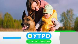 21сентября 2020 года.21сентября 2020 года.НТВ.Ru: новости, видео, программы телеканала НТВ