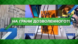 Выпуск от 25сентября 2020года.На грани дозволенного?!НТВ.Ru: новости, видео, программы телеканала НТВ