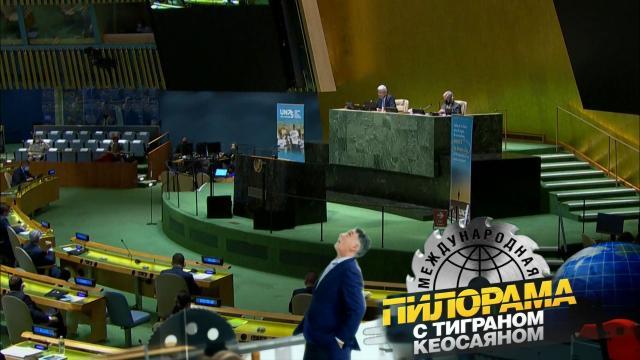 Как Владимир Путин виртуально беседовал ссирийцем иделился мудростью слидерами ШОС.НТВ.Ru: новости, видео, программы телеканала НТВ