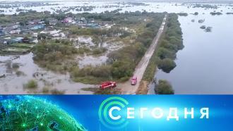 28 сентября 2020 года. 13:00.28 сентября 2020 года. 13:00.НТВ.Ru: новости, видео, программы телеканала НТВ