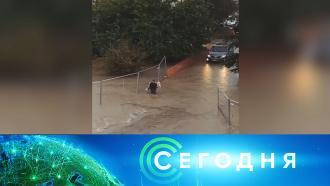1 октября 2020 года. 13:00.1 октября 2020 года. 13:00.НТВ.Ru: новости, видео, программы телеканала НТВ