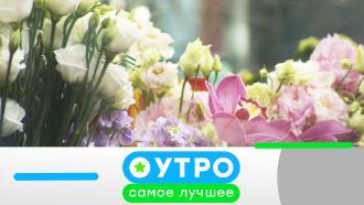 5 октября 2020 года.5 октября 2020 года.НТВ.Ru: новости, видео, программы телеканала НТВ