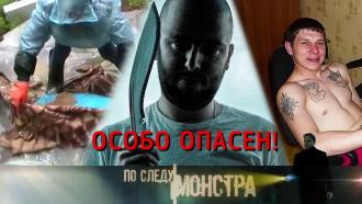 Выпуск от 10 октября 2020 года.«Старший сын».НТВ.Ru: новости, видео, программы телеканала НТВ