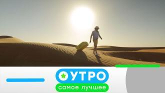 8октября 2020года.8октября 2020года.НТВ.Ru: новости, видео, программы телеканала НТВ