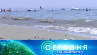 9 октября 2020 года. 19:20.9 октября 2020 года. 19:20.НТВ.Ru: новости, видео, программы телеканала НТВ