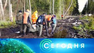 15 октября 2020 года. 19:00.15 октября 2020 года. 19:00.НТВ.Ru: новости, видео, программы телеканала НТВ