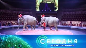 16 октября 2020 года. 16:15.16 октября 2020 года. 16:15.НТВ.Ru: новости, видео, программы телеканала НТВ