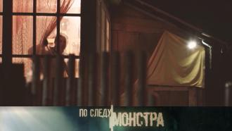 Вкаждом доме— по секрету: куда исчезла деревенская девушка ичто скрывали местные жители? «По следу монстра»— 31октября