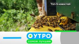 21 октября 2020 года.21 октября 2020 года.НТВ.Ru: новости, видео, программы телеканала НТВ