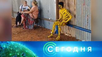 24 октября 2020 года. 16:00.24 октября 2020 года. 16:00.НТВ.Ru: новости, видео, программы телеканала НТВ
