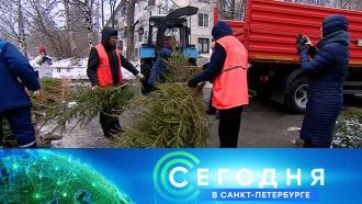11 января 2021 года. 19:20.11 января 2021 года. 19:20.НТВ.Ru: новости, видео, программы телеканала НТВ