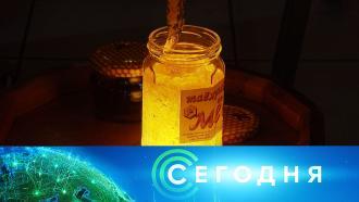 12 января 2021 года. 10:00.12 января 2021 года. 10:00.НТВ.Ru: новости, видео, программы телеканала НТВ
