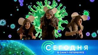 12января 2021года. 19:20.12января 2021года. 19:20.НТВ.Ru: новости, видео, программы телеканала НТВ