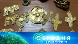 13 января 2021 года. 16:15.13 января 2021 года. 16:15.НТВ.Ru: новости, видео, программы телеканала НТВ