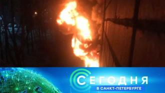 15 января 2021 года. 16:15.15 января 2021 года. 16:15.НТВ.Ru: новости, видео, программы телеканала НТВ