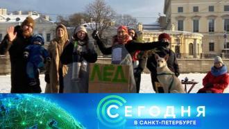 20 января 2021 года. 19:20.20 января 2021 года. 19:20.НТВ.Ru: новости, видео, программы телеканала НТВ