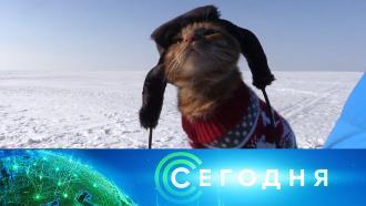 24января 2021года. 10:00.24января 2021года. 10:00.НТВ.Ru: новости, видео, программы телеканала НТВ