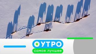 1февраля 2021 года.1февраля 2021 года.НТВ.Ru: новости, видео, программы телеканала НТВ
