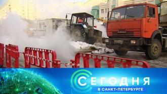2 февраля 2021 года. 19:20.2 февраля 2021 года. 19:20.НТВ.Ru: новости, видео, программы телеканала НТВ