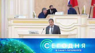 3 февраля 2021 года. 16:15.3 февраля 2021 года. 16:15.НТВ.Ru: новости, видео, программы телеканала НТВ