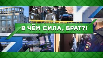 Выпуск от 3 февраля 2021 года.В чем сила, брат?!НТВ.Ru: новости, видео, программы телеканала НТВ