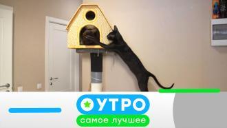 4февраля 2021года.4февраля 2021года.НТВ.Ru: новости, видео, программы телеканала НТВ