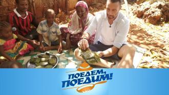 Выпуск от 6февраля 2021года.Занзибар: самый красочный архипелаг Индийского океана, «помадное» растение ичурчхела из осьминога.НТВ.Ru: новости, видео, программы телеканала НТВ
