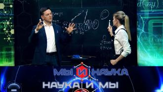 Выпуск от 10 февраля 2021 года.Через 10 лет мир завоюют квантовые компьютеры?НТВ.Ru: новости, видео, программы телеканала НТВ