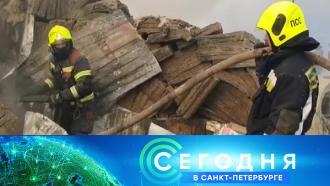 10 февраля 2021 года. 16:15.10 февраля 2021 года. 16:15.НТВ.Ru: новости, видео, программы телеканала НТВ