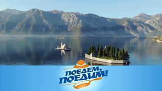 Выпуск от 13февраля 2021года.Черногория: бюджетный отдых илучшие места, вкуснейшее вино и пршут.НТВ.Ru: новости, видео, программы телеканала НТВ