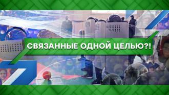 Выпуск от 17февраля 2021года.Связанные одной целью?!НТВ.Ru: новости, видео, программы телеканала НТВ