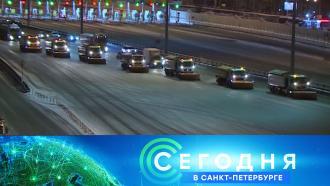 17 февраля 2021 года. 16:15.17 февраля 2021 года. 16:15.НТВ.Ru: новости, видео, программы телеканала НТВ