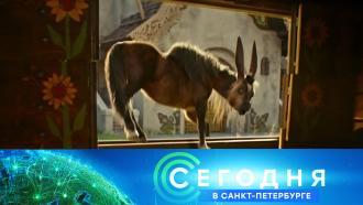 18 февраля 2021 года. 19:20.18 февраля 2021 года. 19:20.НТВ.Ru: новости, видео, программы телеканала НТВ