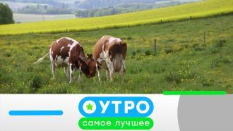 25 февраля 2021 года.25 февраля 2021 года.НТВ.Ru: новости, видео, программы телеканала НТВ