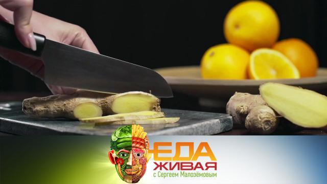 Живая еда с Сергеем Малозёмовым.еда, наука и открытия, продукты, технологии.НТВ.Ru: новости, видео, программы телеканала НТВ