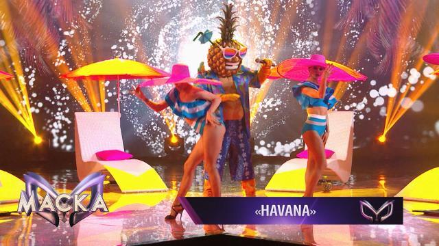 Ананас— Havana.НТВ.Ru: новости, видео, программы телеканала НТВ
