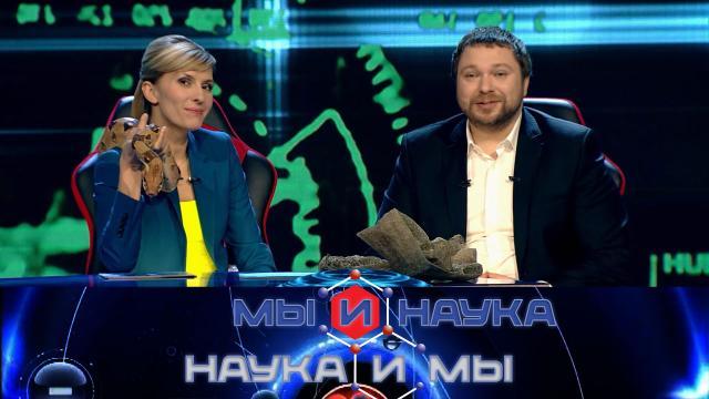 Мы инаука. Наука имы.НТВ.Ru: новости, видео, программы телеканала НТВ