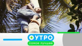 1 марта 2021года.1 марта 2021года.НТВ.Ru: новости, видео, программы телеканала НТВ