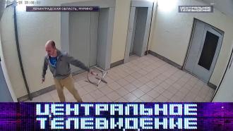 Выпуск от 13 марта 2021 года.Выпуск от 13 марта 2021 года.НТВ.Ru: новости, видео, программы телеканала НТВ