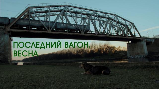 «Последний вагон. Весна».«Последний вагон. Весна».НТВ.Ru: новости, видео, программы телеканала НТВ