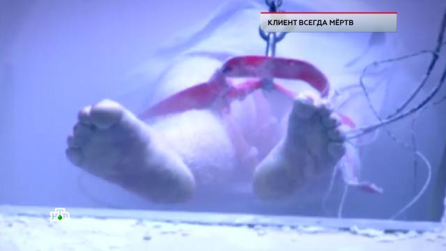 «Клиент всегда мертв».«Клиент всегда мертв».НТВ.Ru: новости, видео, программы телеканала НТВ