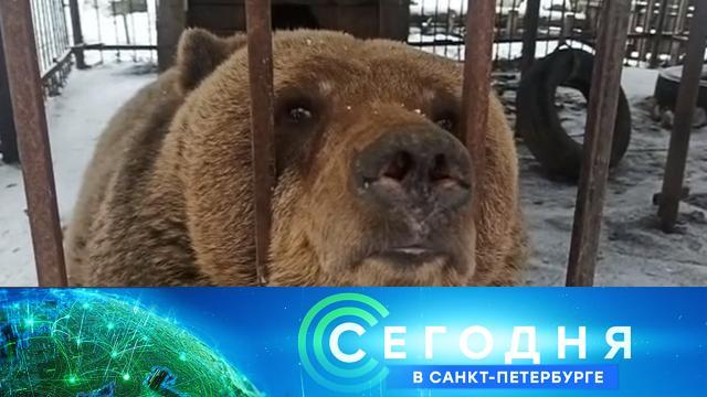 25марта 2021года. 19:20.25марта 2021года. 19:20.НТВ.Ru: новости, видео, программы телеканала НТВ