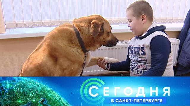 29 марта 2021 года. 19:20.29 марта 2021 года. 19:20.НТВ.Ru: новости, видео, программы телеканала НТВ