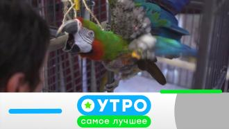 31 марта 2021 года.31 марта 2021 года.НТВ.Ru: новости, видео, программы телеканала НТВ