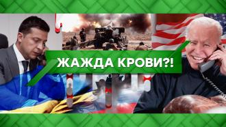 Выпуск от 5 апреля 2021 года.Жажда крови?!НТВ.Ru: новости, видео, программы телеканала НТВ