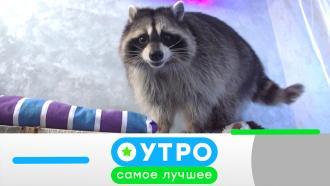 8апреля 2021года.8апреля 2021года.НТВ.Ru: новости, видео, программы телеканала НТВ