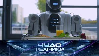 Выпуск от 11 апреля 2021 года.Роботы на службе уресторанов, маска-очиститель воздуха и замена аккумулятора смартфона.НТВ.Ru: новости, видео, программы телеканала НТВ